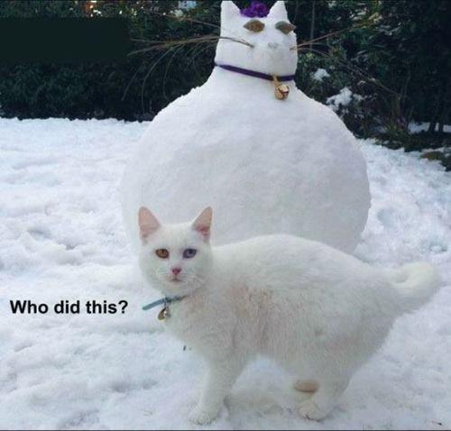 искусство снега