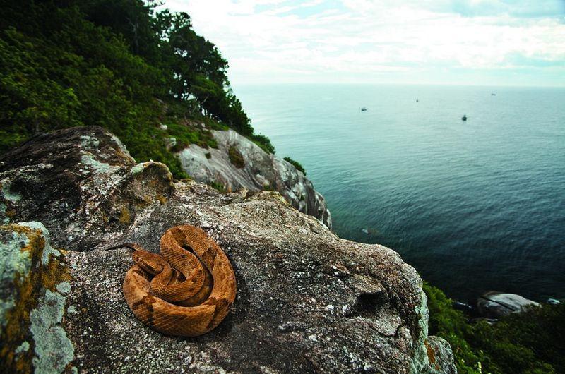 Самые пугающие и опасные острова в мире, на которые не ездят