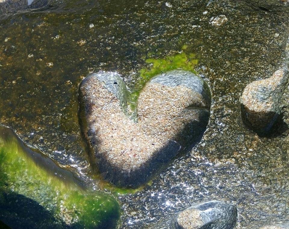 Нелюбовь - от сердца к сердцу
